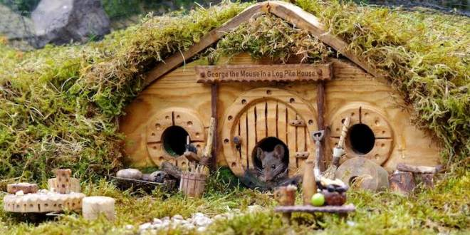 The Good Life – Photographer Builds A Village, For A Small Friend | WMVO