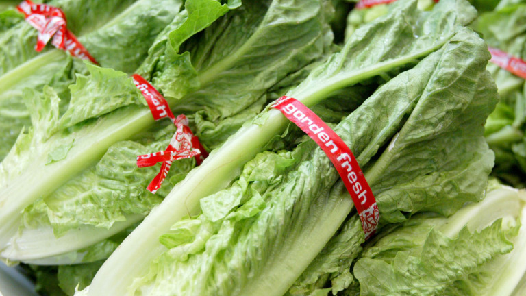 Traces Of Toxic Chemical Found In California Lettuce_539683