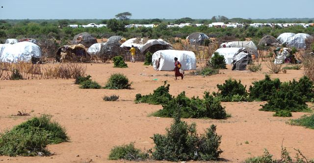 The U.N.'s massive Dadaab camp in Kenya sends a steady stream of Somali refugees to the United States.