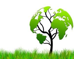 bigstock-Tree-with-foliage-world-map-B-32856428