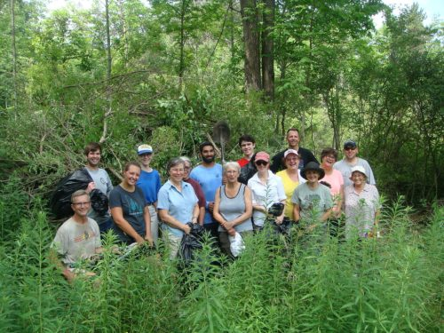Honeysuckle harvest 2016! WNY PRISM joined with the Land Conservancy to remove honeysuckle from the Kenneglenn Nature Preserve as part of 2016 Invasive Species Awareness Week.