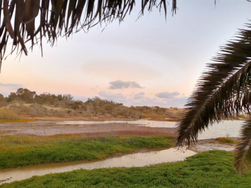 El Charco - Binnensee El Cahrco ist ein wichtiges Naturreservat