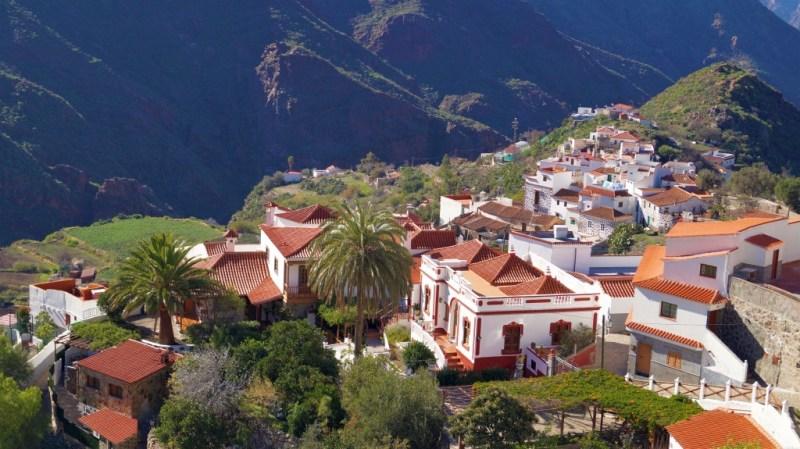 Die Kanarische Dattelpalme prägt überall das Landschaftsbild