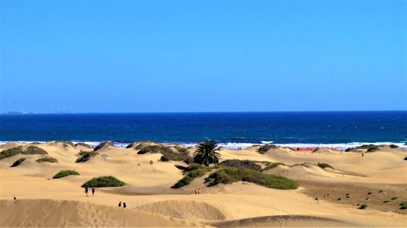 Die bezaubernden Dünen von Maspalomas vor dem blauen Meer