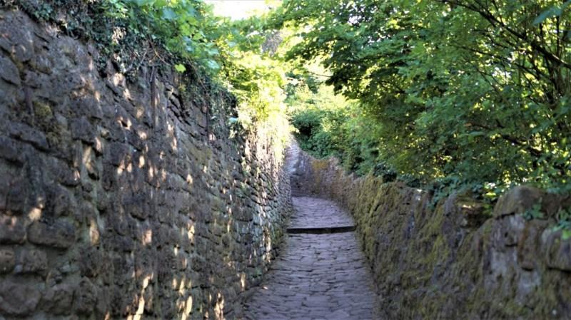 Schlangenweg in Heidelberg