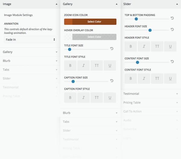 Divi WordPress theme Review Module Customizer