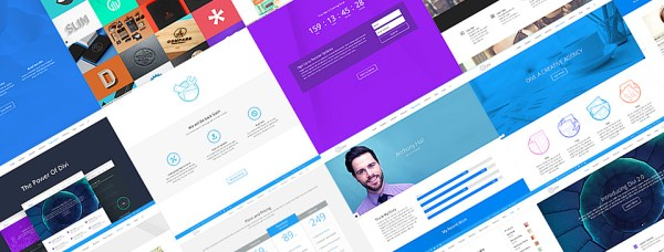 Divi WordPress theme Review Pre-Made Layouts