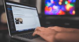 5 Steps to Become a WordPress Freelancer