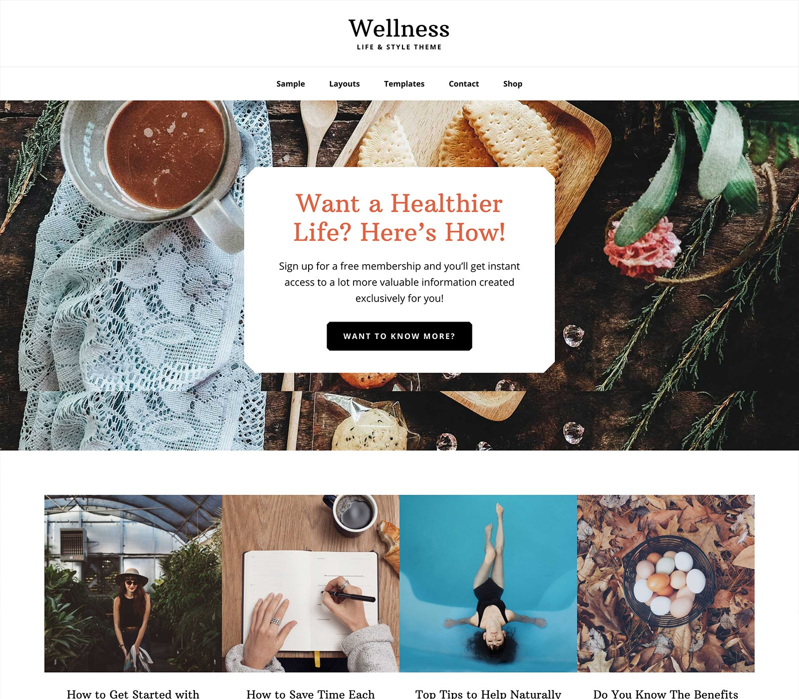 Wellness Pro Theme Top 10 Best Genesis Child Themes For WordPress Blogs