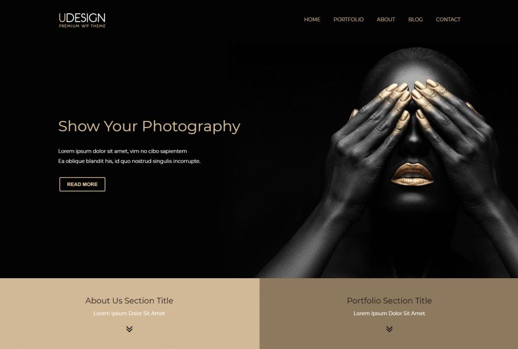 udesign wordpess theme demo photography
