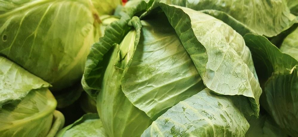 Dieta kapuściana – szczegóły i przepis