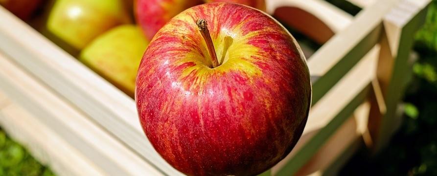 Kasza jaglana z jabłkami – przepis