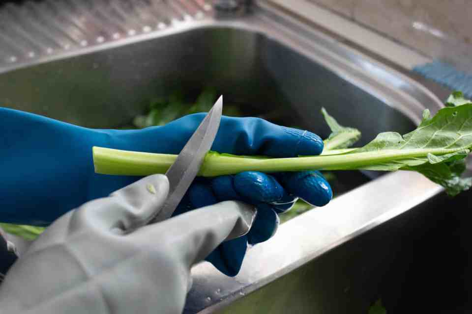 separating jook choy stems with knife for crispy pork belly with stir fried Asian greens