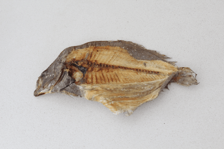 Dehydrated flounder