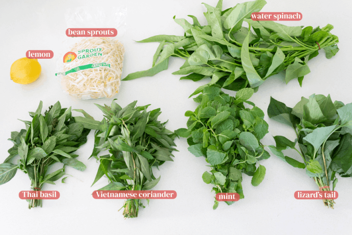 Lemon, bean sprouts, water spinach, Thai basil, Vietnamese coriander, mint and lizard's tail