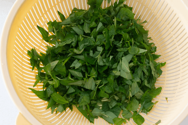 Cut mint and Vietnamese coriander in a colander.