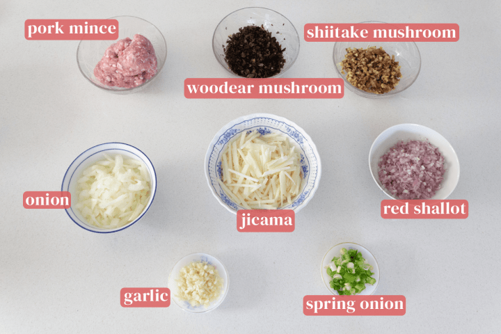 Bowls of mince, chopped woodear mushrooms, shiitake mushrooms, jicama, red shallots and onions along with dishes of chopped garlic and spring onions.