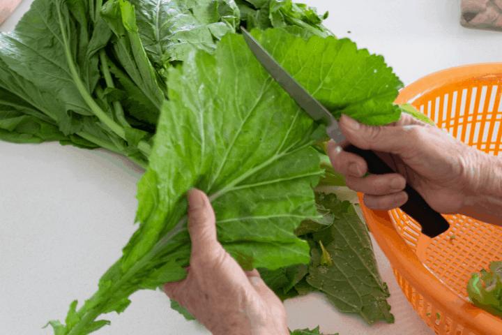 A knife cutting into a leaf.