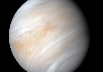 Spotlight on Venus