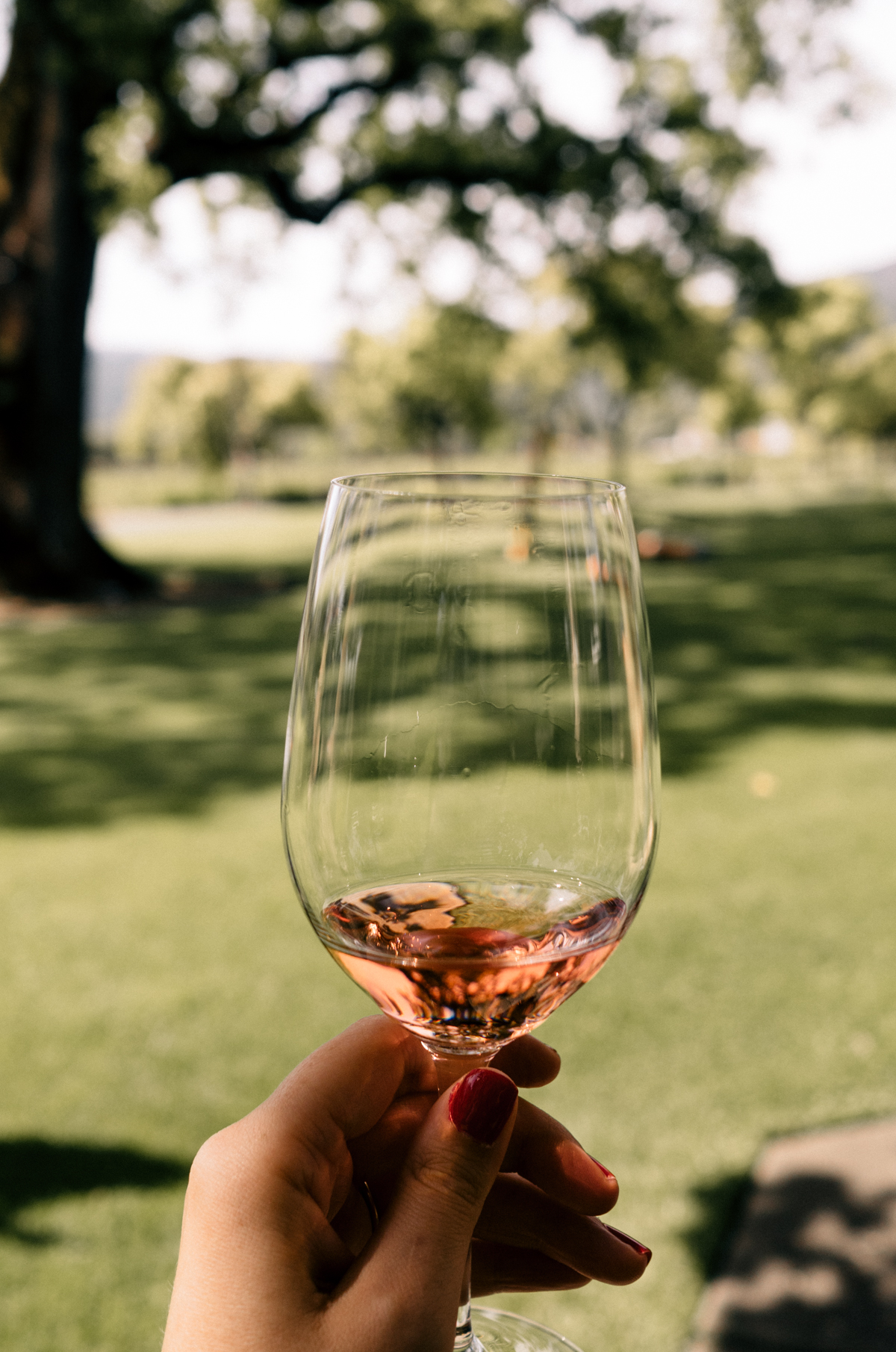 All Aboard the Napa Valley Wine Train   Sipping a taste of rose at St Supery Estate   Wolf & Stag