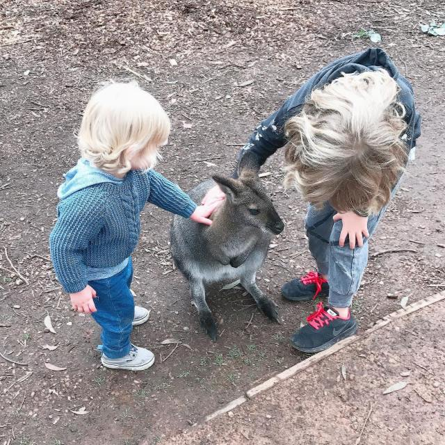 Just a typical day in Australia spent patting a wallaby