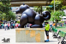A Botero dog and and unsuspecting tourist
