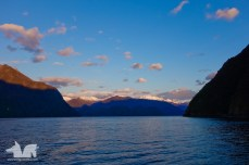 Late evening light as we completed our final Ferry ride of the day