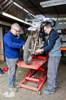 The Wolf and Johnny replacing the Zebramobile's steering head bearing