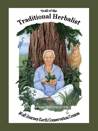 The Tenets of Herbal Medicine: Guidelines & Rules for Health, Safety & Success