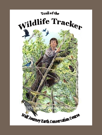 Reviews of the Top 10 Professional Wildlife Tracking Books