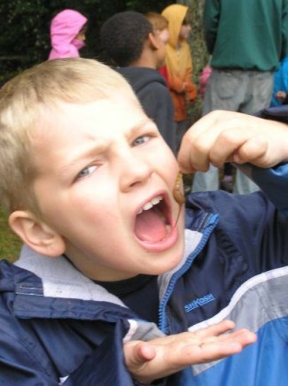 Boy at Wolf Camp eating Chocolate Covered Mealworms