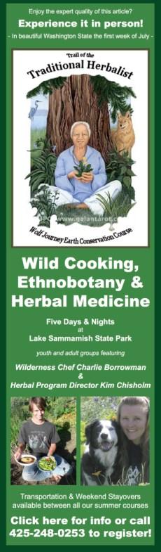 Ad-Blog-Herbal