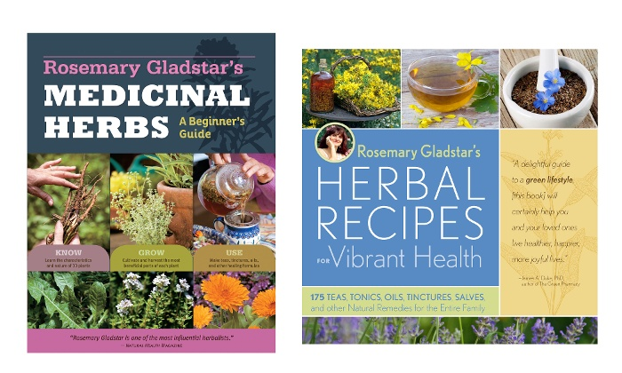 "Rosemary Gladstar's ""Medicinal Herbs: A Beginner's Guide: 33 Healing Herbs to Know, Grow, and Use"" Book Review"