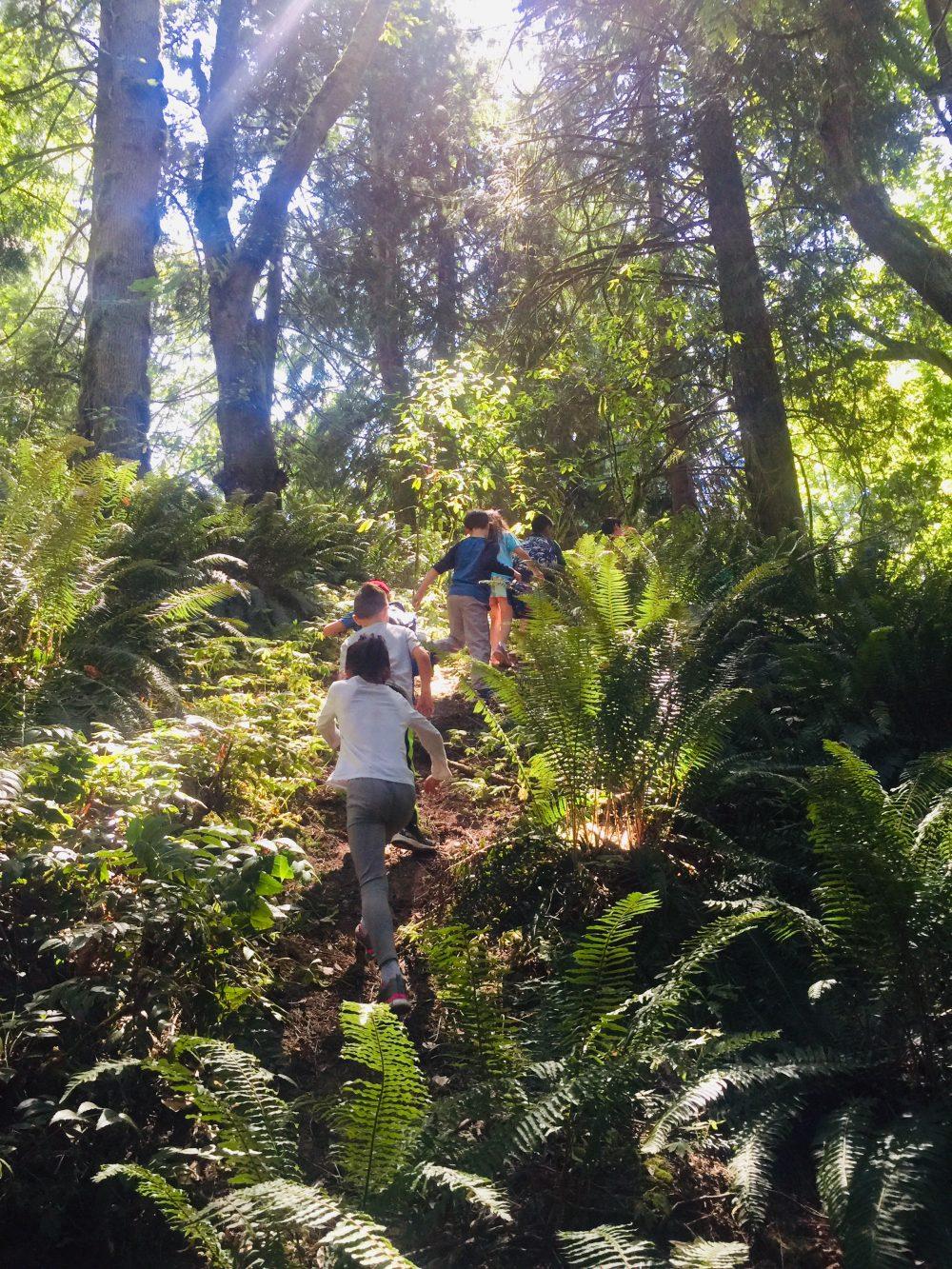 Kids hiking in Lake Sam