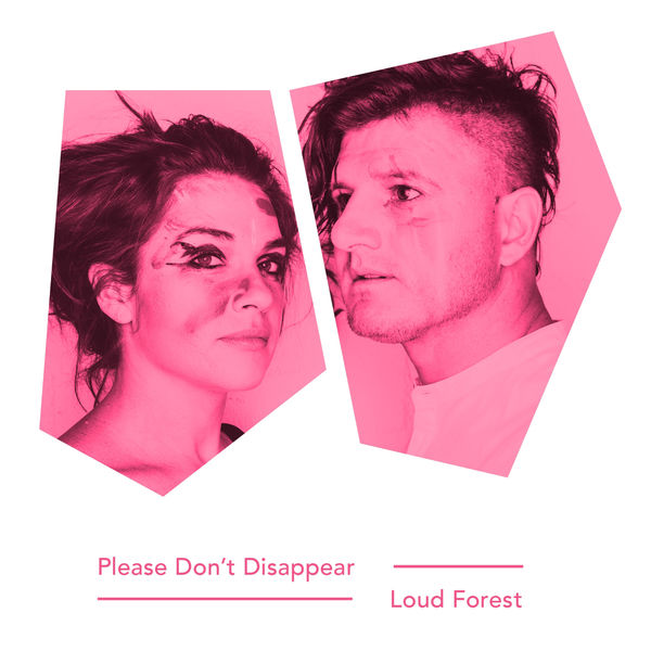 album recommendation-please don't dissappear - loud forest - indie music-new music- indie pop-music blog-indie blog-wolf in a suit-wolfinasuit--wolf in a suit blog-wolf in a suit music blog