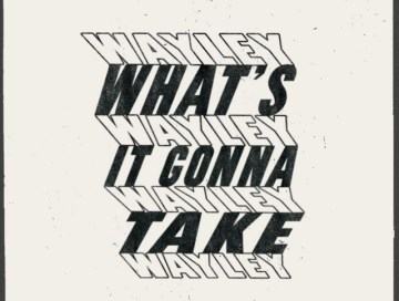 what's it gonna take - wayley - Canada - indie - indie music - indie pop - new music - music blog - wolf in a suit - wolfinasuit - wolf in a suit blog - wolf in a suit music blog