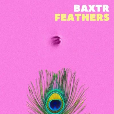feathers - baxtr - UK - indie - indie music - indie pop - new music - music blog - wolf in a suit - wolfinasuit - wolf in a suit blog - wolf in a sit music blog