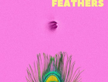 feathers - baxtr - UK - indie - indie music - indie pop - new music - music blog - wolf in a suit - wolfinasuit - wolf in a suit blog - wolf in a sit music blog
