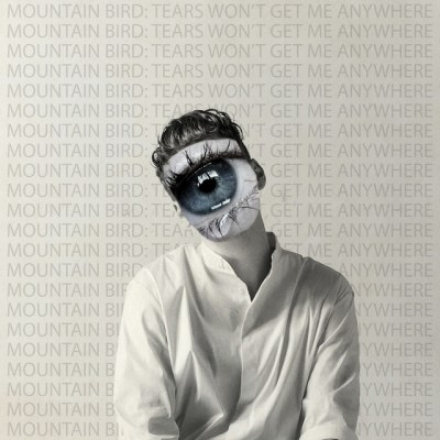 tears won't get me anywhere - mountain bird - Sweden - indie music - indie pop - new music - music blog - wolf in a suit - wolfinasuit - wolf in a suit blog - wolf in a suit music blog