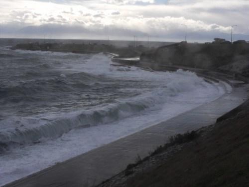 Clover Point, December 20, 2010