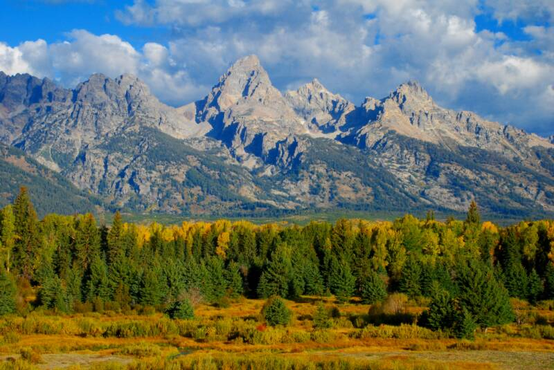 Photo Gallery Grand Tetons Wolfs Vision Nature