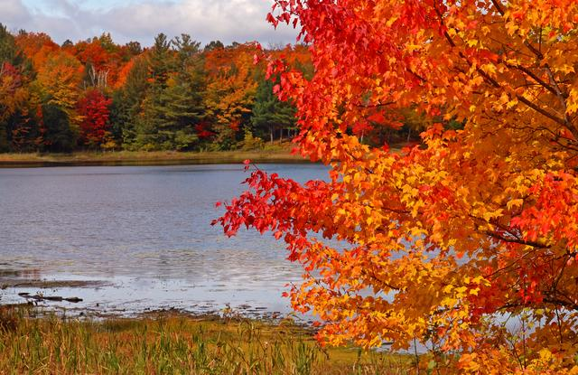 Photo Gallery Wisconsin Fall Colors Wolfs Vision
