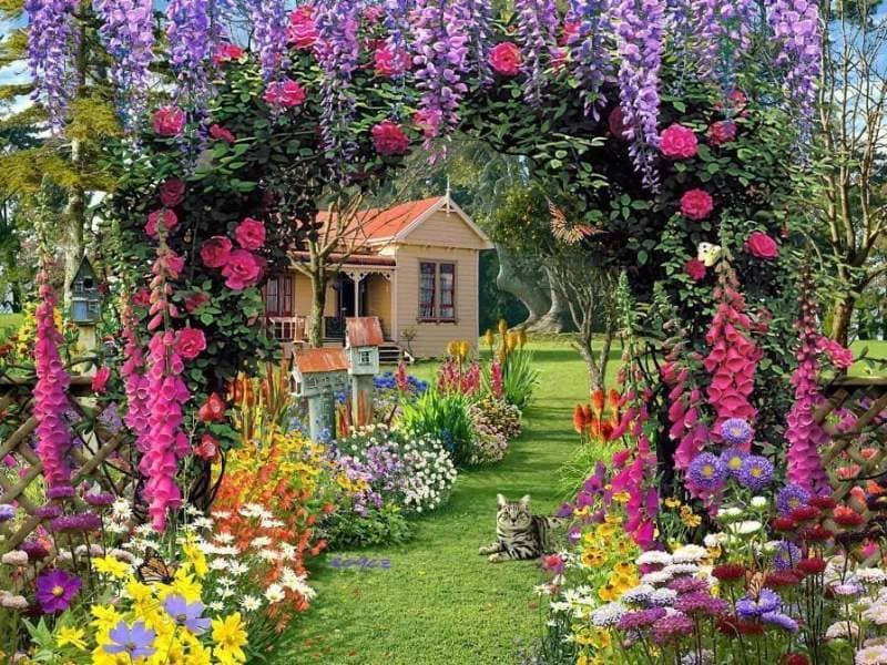 Όλα τα Στάδια για τη Διακόσμηση Κήπου με Γκαζόν - Κάντο Μόνος σου
