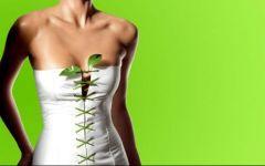 Βότανα για Αδυνάτισμα: ένας Γρήγορος Τρόπος να χάσεις Βάρος πριν το Καλοκαίρι