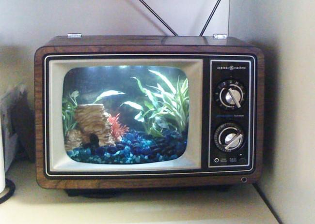 μεταμόρφωση παλιάς τηλεόρασης σε ενυδρείο
