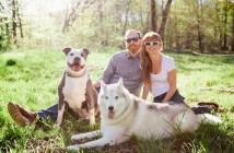 טיפים לזוגות עם כלבים