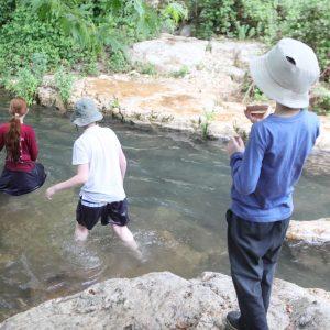 חוויה נגישה לכל המשפחה - טיול בנחל כזיב