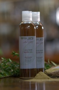שמפו צמחי מרפא הדס לטיפול בנשירת שיער והקרחה