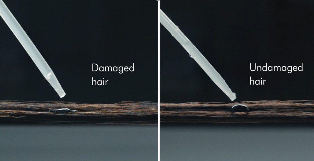 שיער בריא לעומת שיער פגום