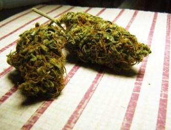 New Marijuana Rule Is Great News for Women